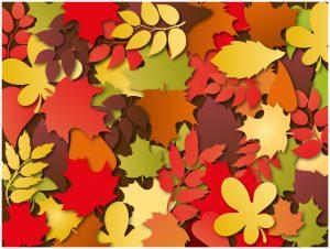 東北の紅葉で秋を愛でる!!